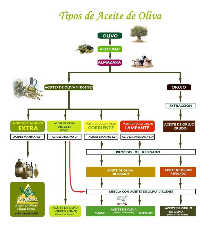 El Aceite De Oliva Una Gu A Para No Perderse En La Cocina