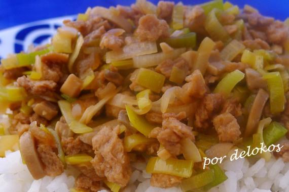 Carne vegetal con puerro, por delokos