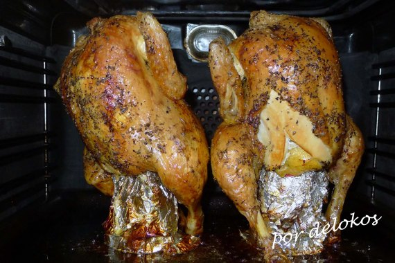 Pollo sentado, por delokos